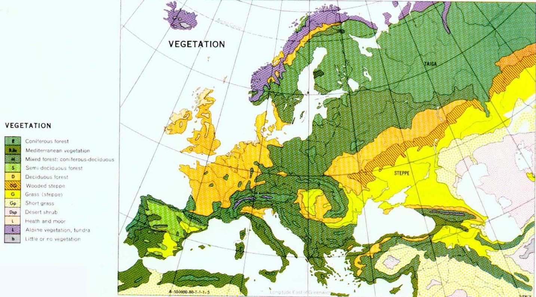 Slavic Landscapes December 2012
